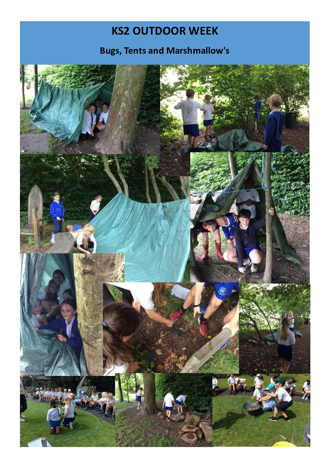 KS2 OUTDOOR WEEK – Bugs, Dens and Marshmallows